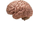 Epica Foundation